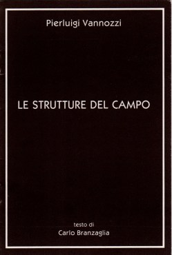 Le strutture del campo - copertina del catalogo - testo di Carlo Branzaglia Bologna 1990
